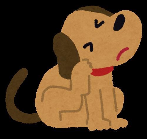 愛犬からフケが出てきたらそれは病気かも?