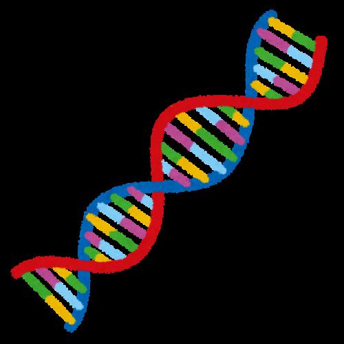 犬アトピー性皮膚炎は遺伝する?