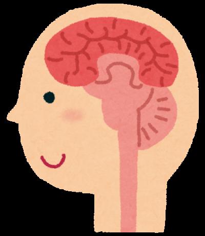 射精のしくみは脳内にもある