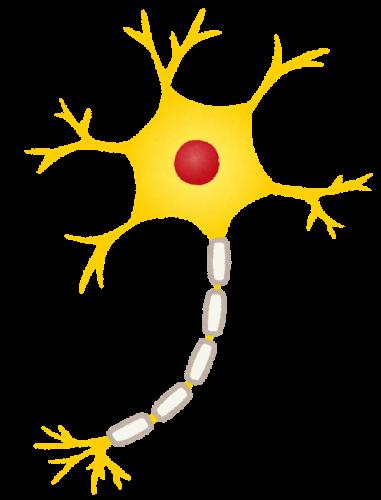 ダポキセチンはセロトニンの再吸収を阻害