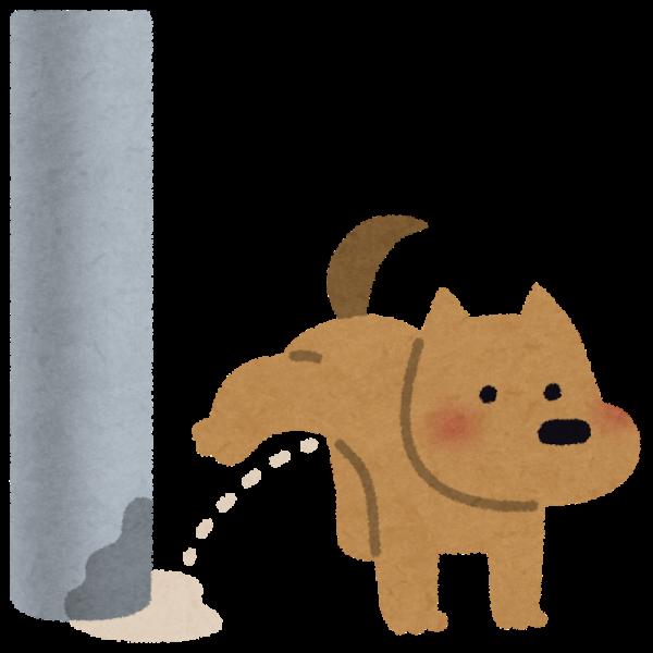 犬が血尿を出したらどうすればいい?原因や病気・対策方法